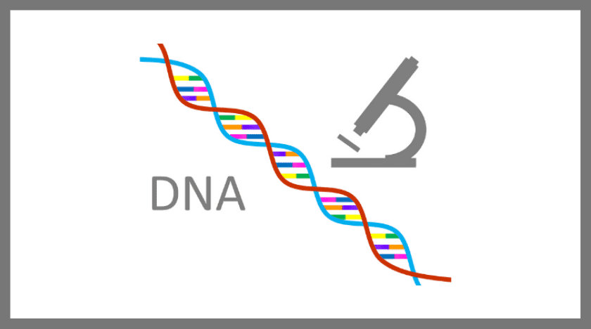 仙台のDNA鑑定による浮気調査